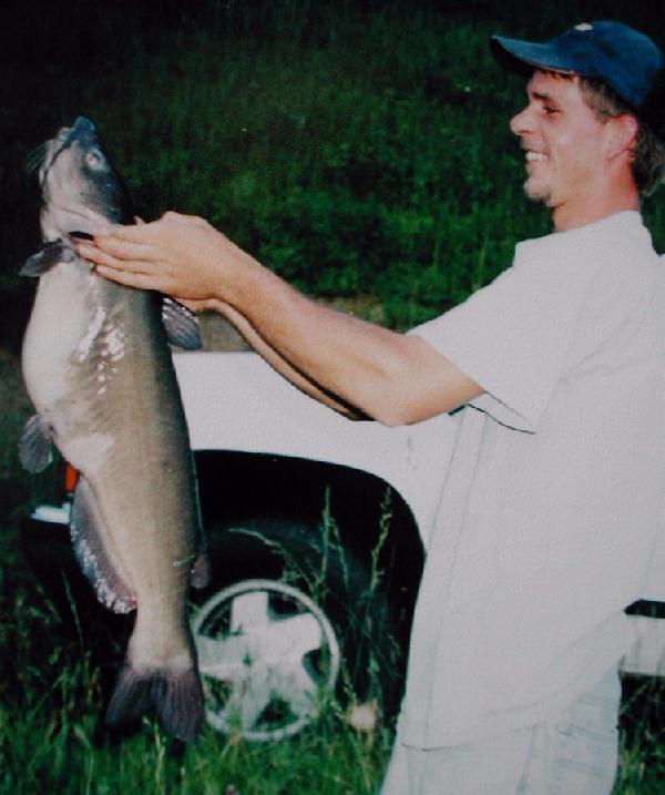 Katzenwelse for Beliebte teichfische